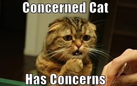 concern3