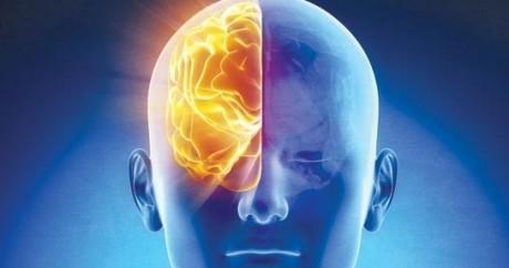 brainhalf