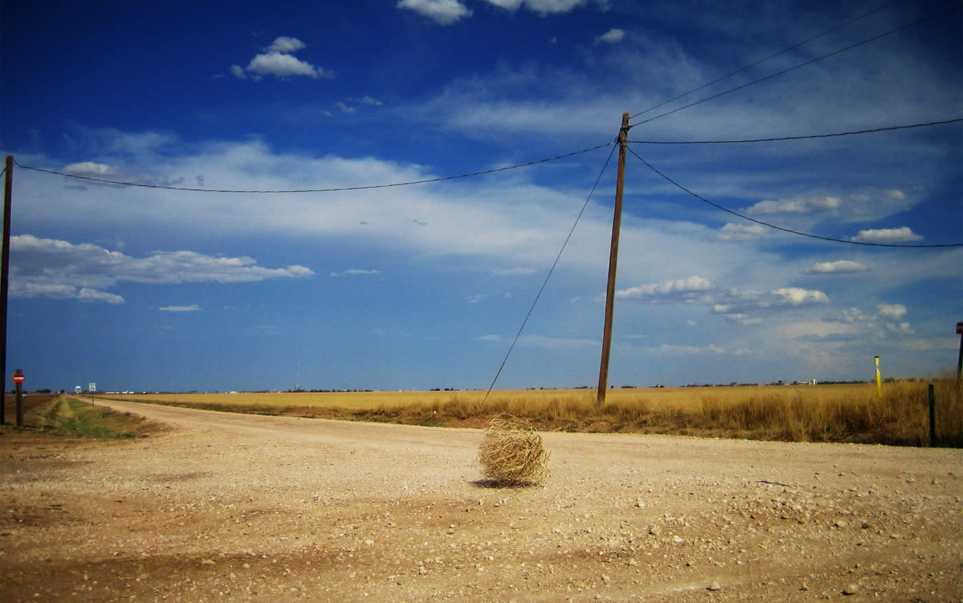 how to say tumbleweed in french